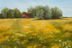 Fields of Gold - Melissa Richter